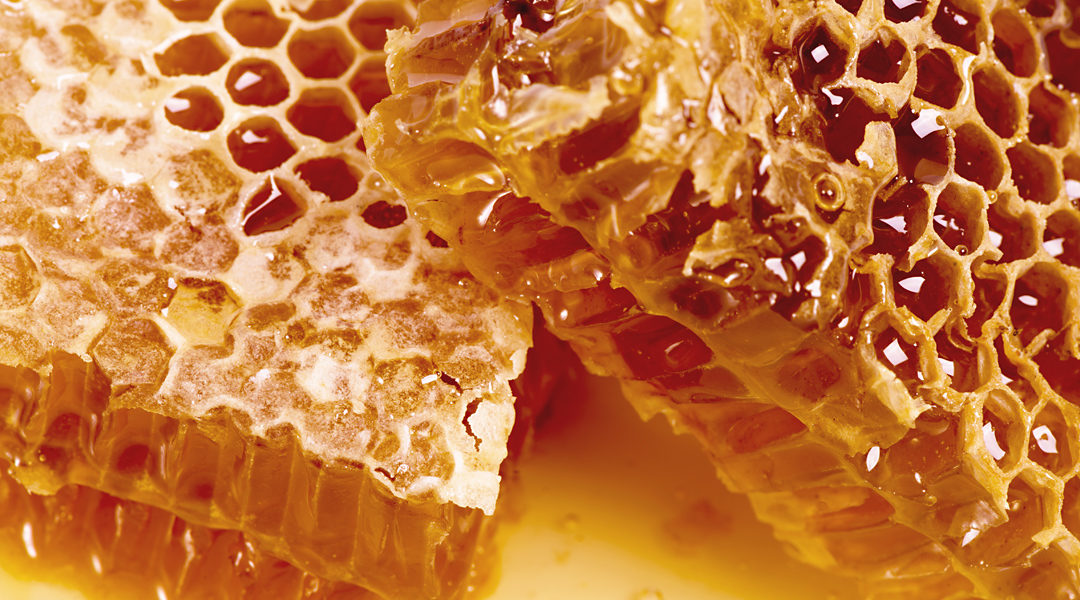Royal Jelly: Facts & Benefits